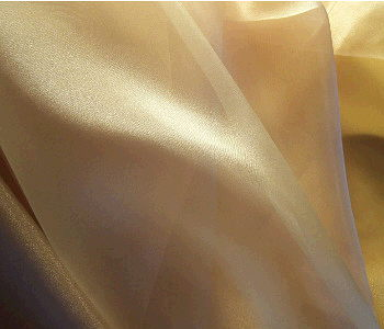 Where to find Organza Champagne Tablecloth in Philadelphia